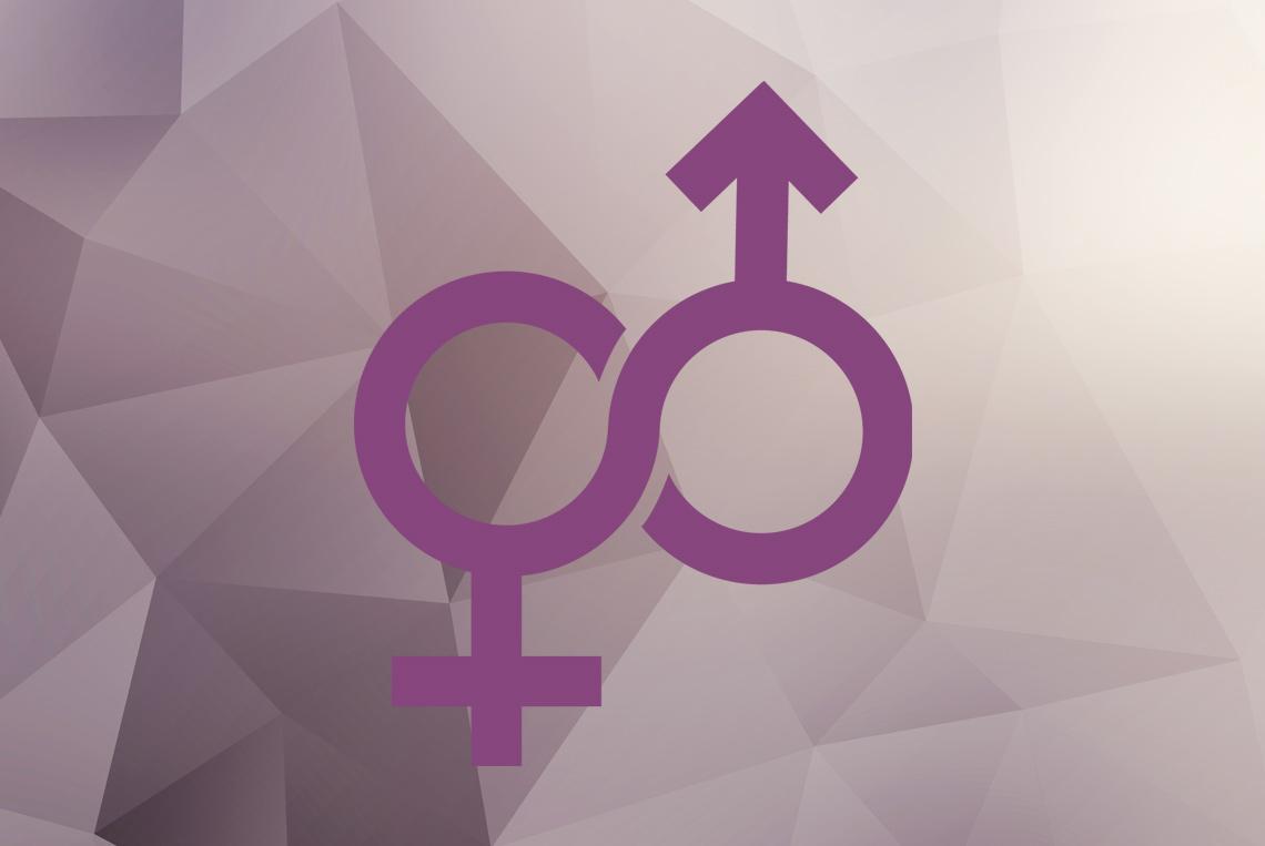 Γενική Γραμματεία Ισότητας Φύλων